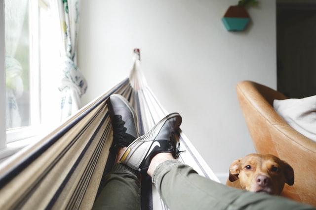 Pet nasvetov za čim bolj srečno brezposelnost
